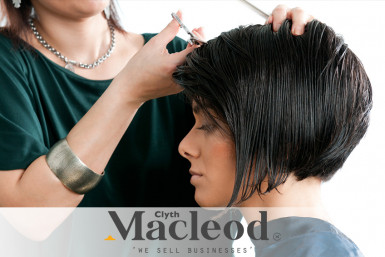 Salon Business for Sale Three Kings Auckland