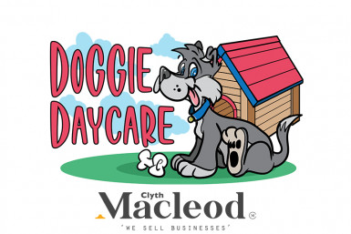 Doggy Day Care Business for Sale Auckland