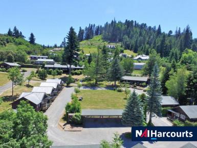 Motel Business for Sale Hanmer Springs