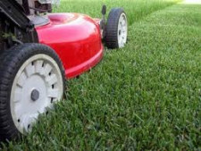 Lawn Mowing & Gardening  Franchise  for Sale