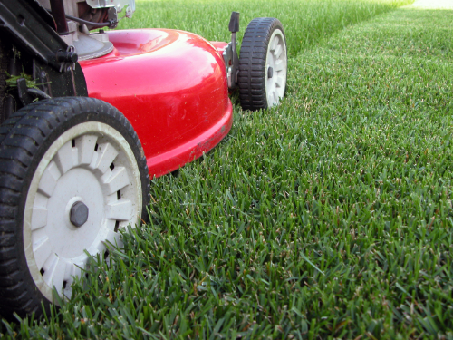 Lawn Mowing & Gardening Franchise for Sale New Zealand Wide