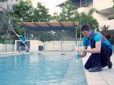 Pool Services Franchise for Sale Napier and Hastings