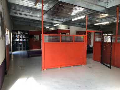 Dog Daycare Business for Sale Silverdale Auckland