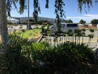 Garden and Lawn Franchise for Sale Christchurch