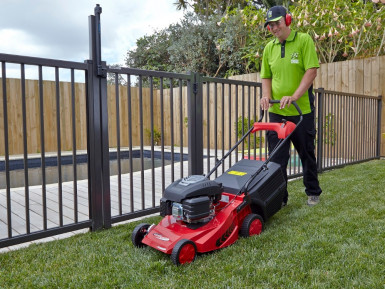 Lawns and Garden Franchise for Sale Auckland Central